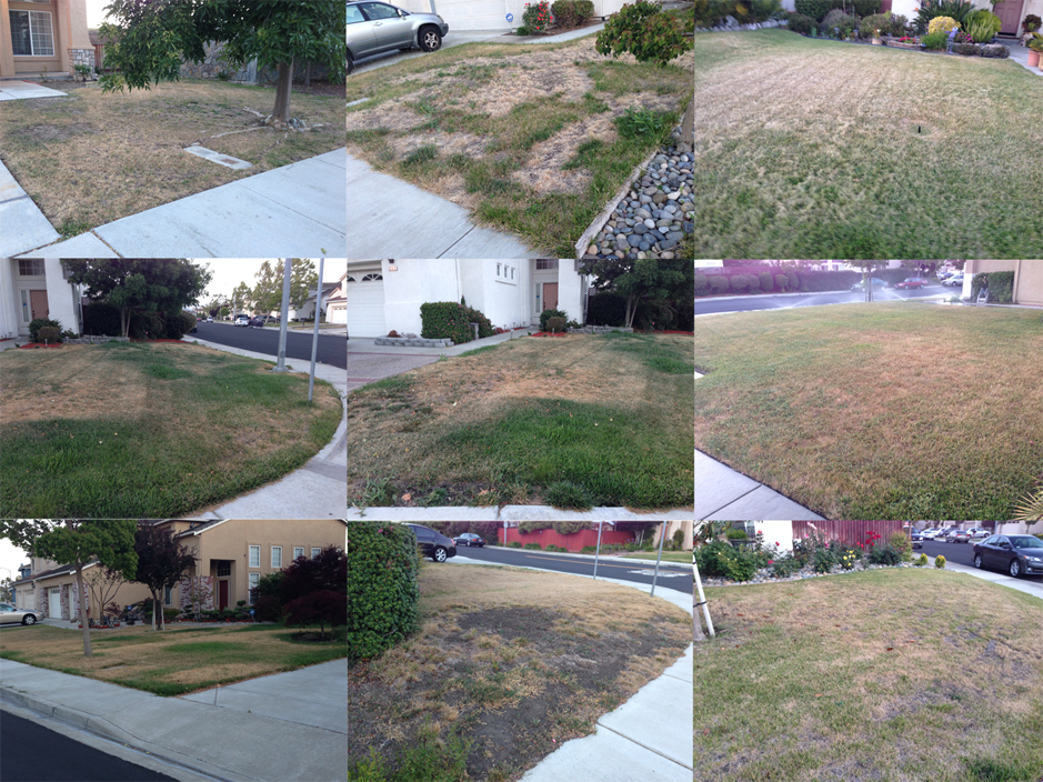 fakegrass California drought worsening: New water restrictions carry penalty of up to $500
