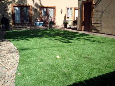 Artificial Grass Photos: Artificial Grass Carpet Ballard, California Lawns, Backyards