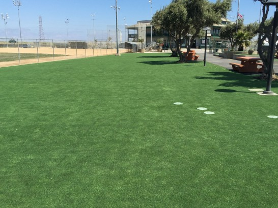 Artificial Grass Photos: Artificial Grass Carpet Carpinteria, California City Landscape, Recreational Areas