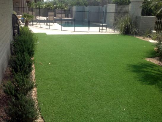 Artificial Grass Photos: Artificial Grass Carpet Santa Barbara, California Landscape Design, Backyard Design