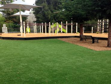 Artificial Grass Photos: Artificial Grass Carpet Vandenberg Air Force Base, California Playground, Backyard Landscape Ideas