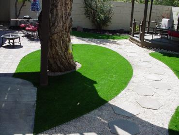 Artificial Grass Photos: Artificial Grass Installation Casmalia, California Roof Top, Backyard Landscape Ideas