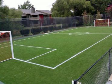Artificial Grass Photos: Artificial Grass Installation Casmalia, California Eco Friendly Products, Commercial Landscape