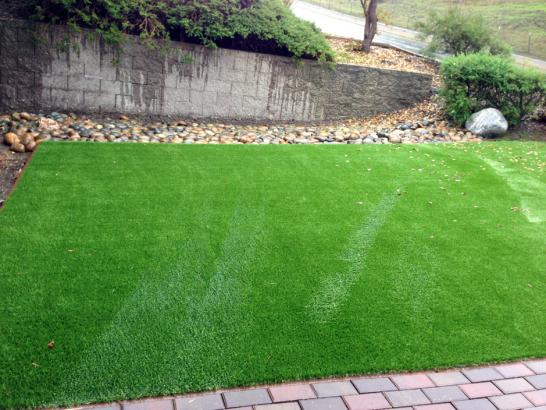 Artificial Grass Photos: Artificial Grass Installation Mission Hills, California Home And Garden, Backyard Ideas