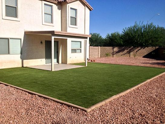 Artificial Grass Photos: Artificial Grass Vandenberg Air Force Base, California Landscape Photos, Small Backyard Ideas