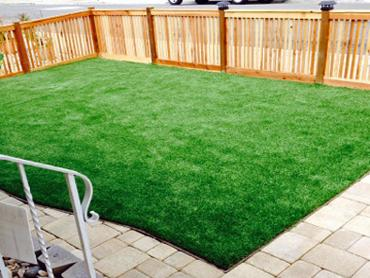 Artificial Grass Photos: Artificial Lawn Ballard, California Roof Top, Backyard Designs