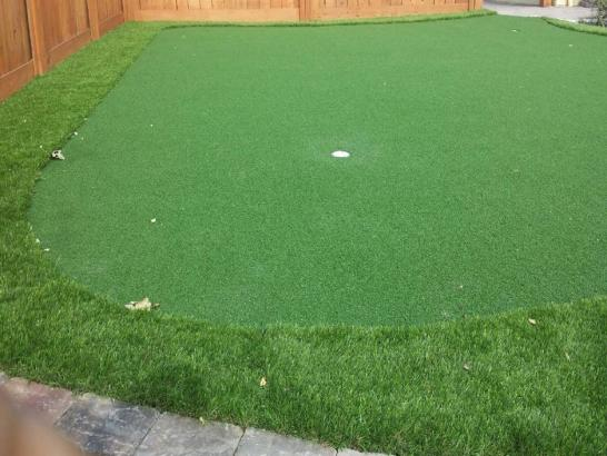 Artificial Grass Photos: Artificial Lawn Buellton, California Landscape Design