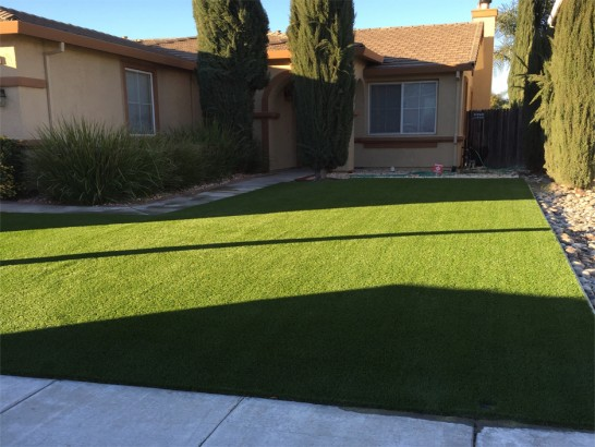 Artificial Grass Photos: Artificial Lawn Vandenberg Village, California Landscape Photos, Front Yard Ideas