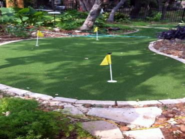 Artificial Grass Photos: Artificial Turf Cost Santa Maria, California Home And Garden, Beautiful Backyards
