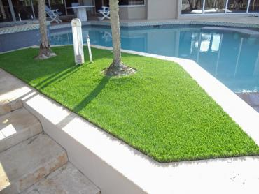 Artificial Grass Photos: Artificial Turf Guadalupe, California Paver Patio, Backyards
