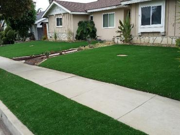 Artificial Grass Photos: Artificial Turf Los Olivos, California Lawns, Landscaping Ideas For Front Yard