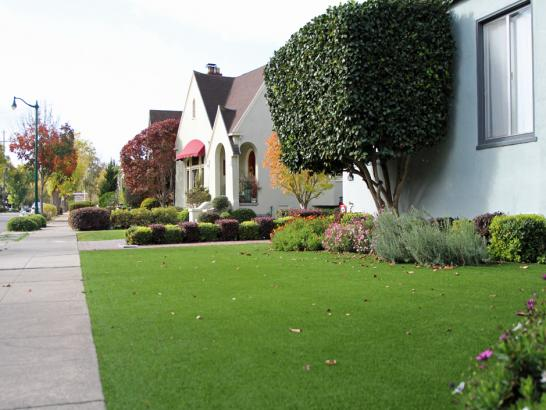 Artificial Grass Photos: Best Artificial Grass Ballard, California Paver Patio, Front Yard Landscape Ideas