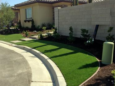 Artificial Grass Photos: Best Artificial Grass Goleta, California Landscape Design, Front Yard Landscaping