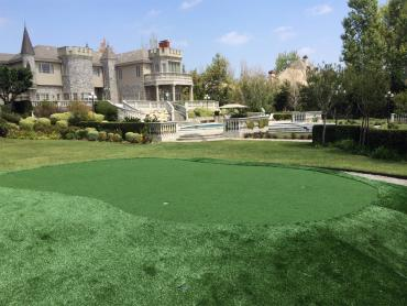 Best Artificial Grass Isla Vista, California Garden Ideas, Front Yard Design artificial grass