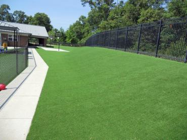 Artificial Grass Photos: Best Artificial Grass Orcutt, California Landscape Photos, Commercial Landscape