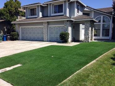 Artificial Grass Photos: Fake Grass Carpet Santa Barbara, California Landscape Photos, Front Yard Landscaping
