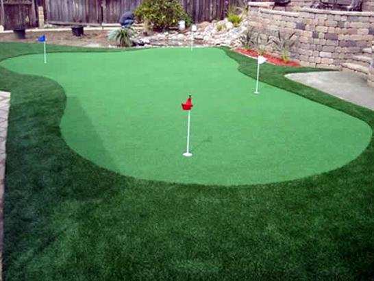 Artificial Grass Photos: Fake Grass Carpet Solvang, California Diy Putting Green, Backyard Ideas