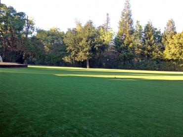 Artificial Grass Photos: Fake Lawn Buellton, California Lawns, Parks
