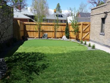 Artificial Grass Photos: Fake Lawn Toro Canyon, California Gardeners, Small Backyard Ideas