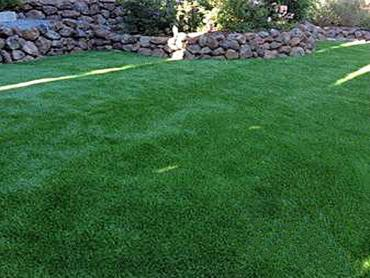Artificial Grass Photos: Fake Turf Ballard, California Grass For Dogs, Backyard Makeover