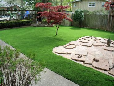 Artificial Grass Photos: Fake Turf Goleta, California Garden Ideas, Backyard Designs