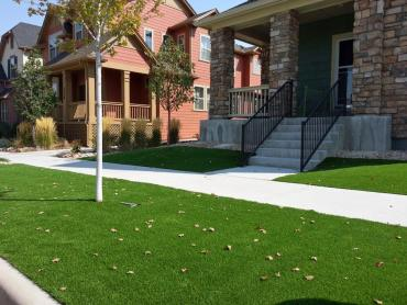 Fake Turf Guadalupe, California Landscape Design, Front Yard Ideas artificial grass