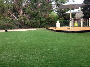 Artificial Grass Photos: Fake Turf Mission Canyon, California Playground