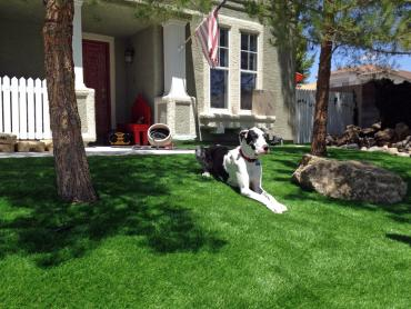 Artificial Grass Photos: Fake Turf Santa Maria, California Landscaping Business, Front Yard Landscaping Ideas