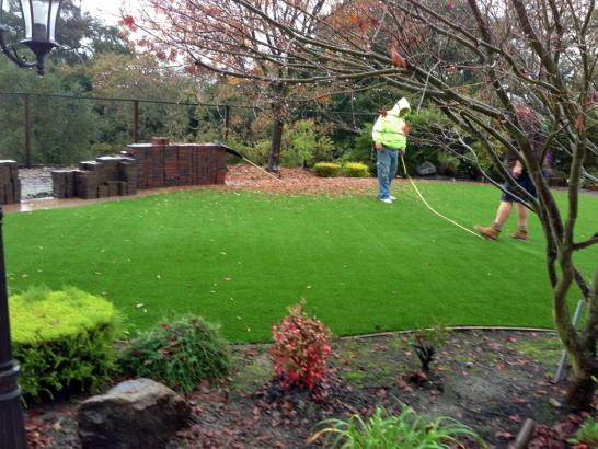 Artificial Grass Photos: Fake Turf Santa Ynez, California Home And Garden, Backyard Landscaping Ideas