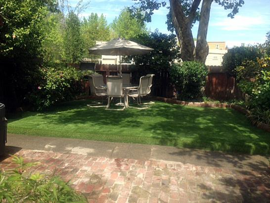 Artificial Grass Photos: Fake Turf Sisquoc, California Landscape Ideas, Backyard Designs