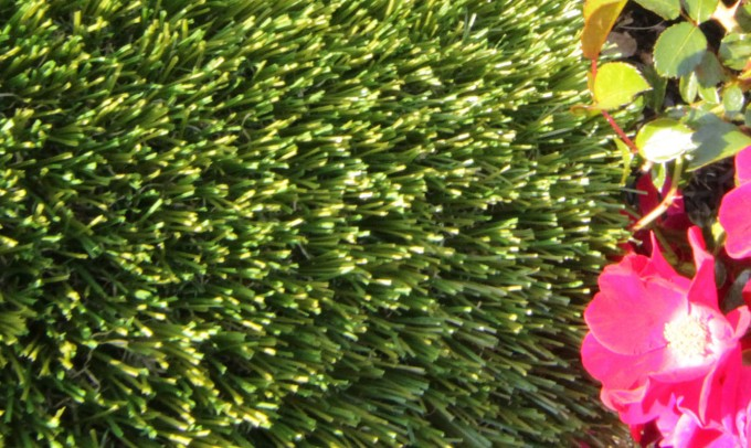 V Blade-77 fakegrass Artificial Grass Santa Barbara California