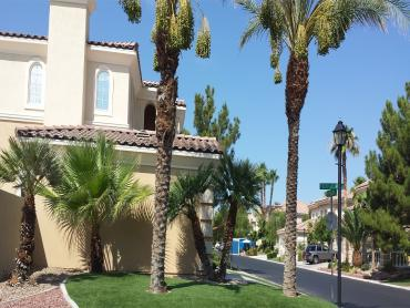 Artificial Grass Photos: Faux Grass Cuyama, California Garden Ideas, Front Yard Landscape Ideas