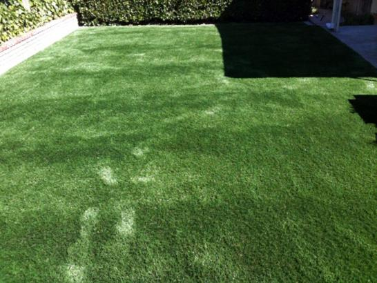 Artificial Grass Photos: Faux Grass Los Alamos, California Pet Paradise, Beautiful Backyards