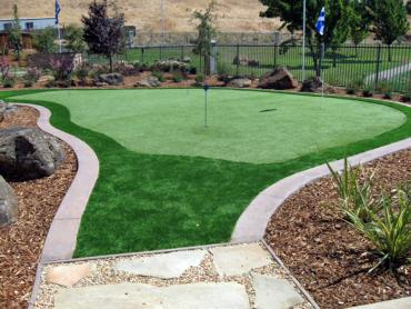 Artificial Grass Photos: Faux Grass Toro Canyon, California Indoor Putting Green, Small Backyard Ideas