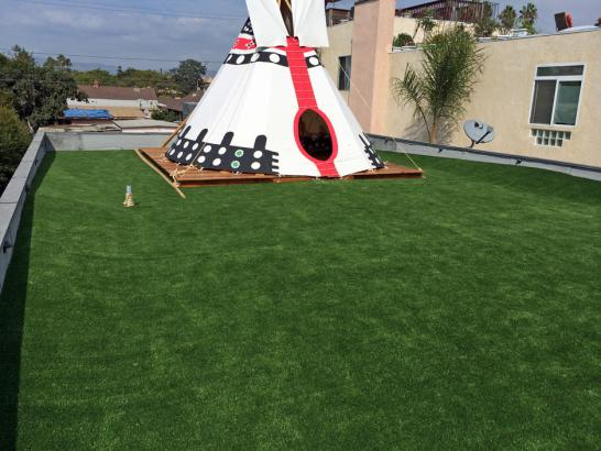 Artificial Grass Photos: Faux Grass Vandenberg Village, California Design Ideas, Roof Top