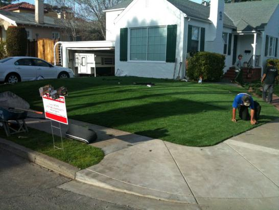 Artificial Grass Photos: Grass Carpet Ballard, California Garden Ideas, Front Yard Landscaping Ideas
