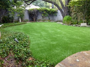 Artificial Grass Photos: Grass Carpet New Cuyama, California Gardeners, Small Backyard Ideas