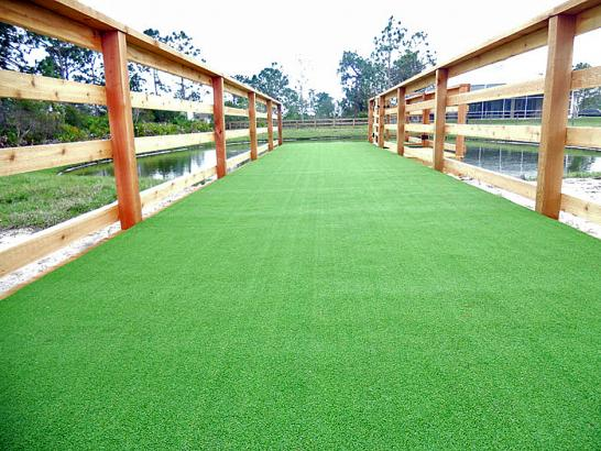 Artificial Grass Photos: Grass Installation Buellton, California Cat Grass, Commercial Landscape