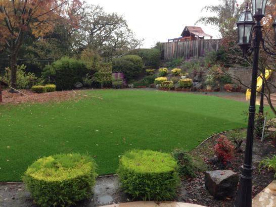Artificial Grass Photos: Grass Installation Santa Maria, California Garden Ideas, Backyard Ideas