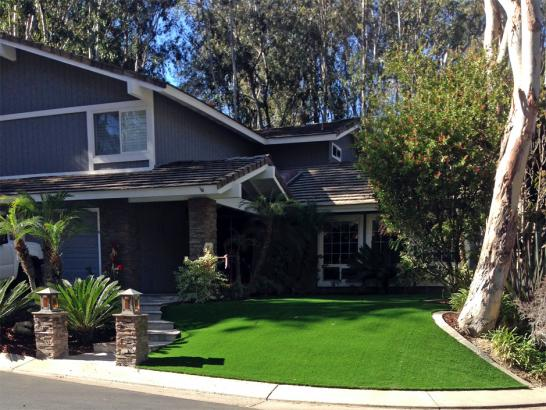 Artificial Grass Photos: Grass Turf Carpinteria, California Landscaping, Front Yard Landscape Ideas