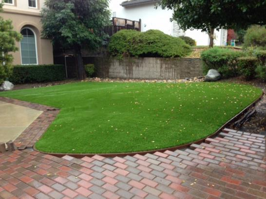 Artificial Grass Photos: Grass Turf Goleta, California Design Ideas, Front Yard