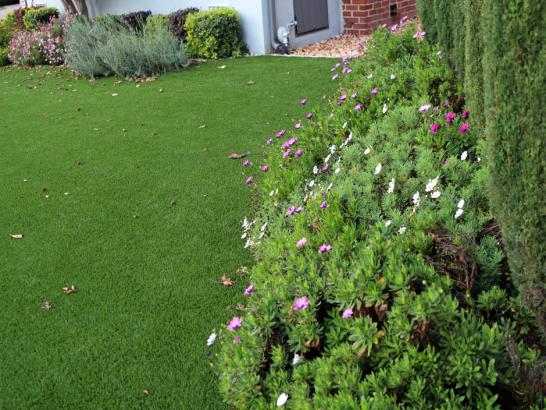 Artificial Grass Photos: Grass Turf Guadalupe, California City Landscape, Small Front Yard Landscaping