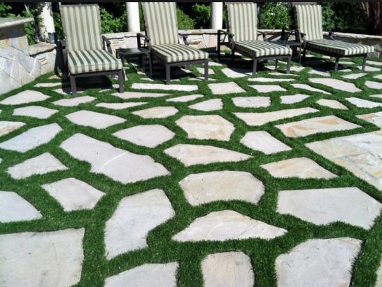 Artificial Grass Photos: Grass Turf Isla Vista, California Garden Ideas, Beautiful Backyards