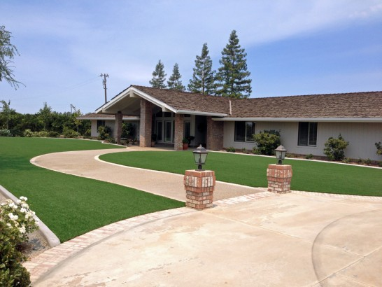 Artificial Grass Photos: Grass Turf Los Alamos, California Home And Garden, Front Yard Landscaping Ideas