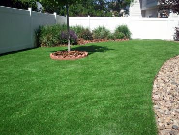 Artificial Grass Photos: Grass Turf Los Olivos, California Lawns, Backyard Garden Ideas