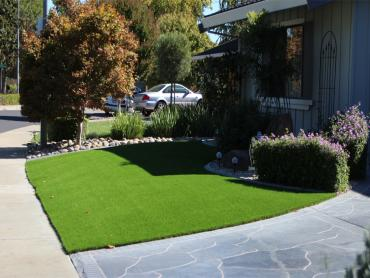 Artificial Grass Photos: Grass Turf Mission Hills, California Lawns, Front Yard Landscaping Ideas