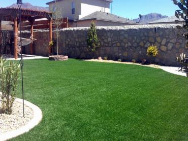 Artificial Grass Photos: Grass Turf Santa Maria, California Garden Ideas, Beautiful Backyards