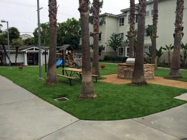 Artificial Grass Photos: Green Lawn Ballard, California Backyard Playground, Commercial Landscape