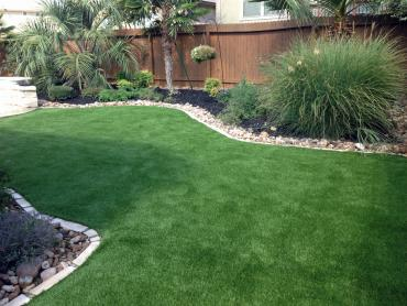 Artificial Grass Photos: Green Lawn Carpinteria, California Artificial Grass For Dogs, Backyard
