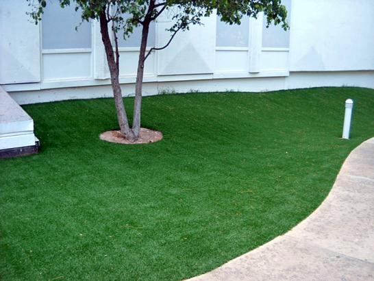 Artificial Grass Photos: How To Install Artificial Grass Orcutt, California Landscaping Business, Commercial Landscape